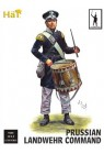 Napoleonic Prussian Landwehr Command